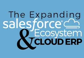Intacct Blog: IDC Reports— Salesforce Cloud Ecosystem on the Rise