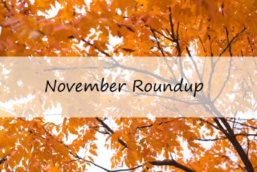 Intacct Blog: November Roundup